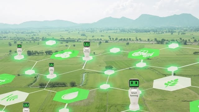 From Farm to Table: Bringing AI into an Enterprise