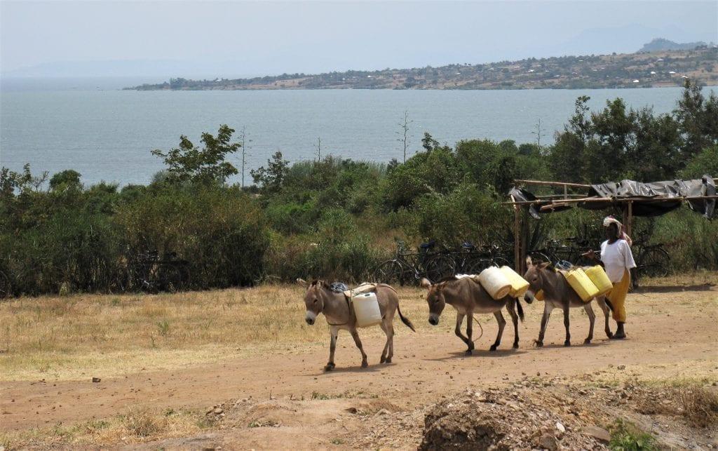 Muhuru Bay