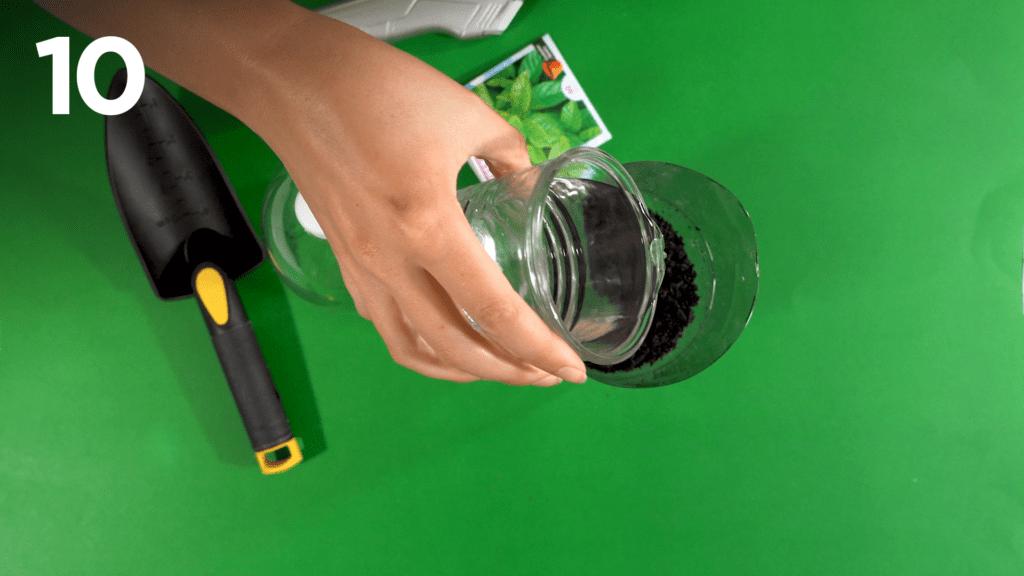 Moisten the soil with a little bit of water.