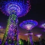 Lenovo brand image -- super trees made of bright lights