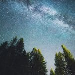 Lenovo brand image: looking up through pine trees at the milky way galaxy at night.